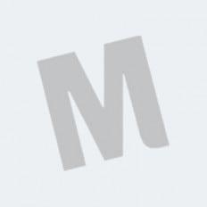 Talent - MAX leeropdrachtenboek 4 vmbo-gt